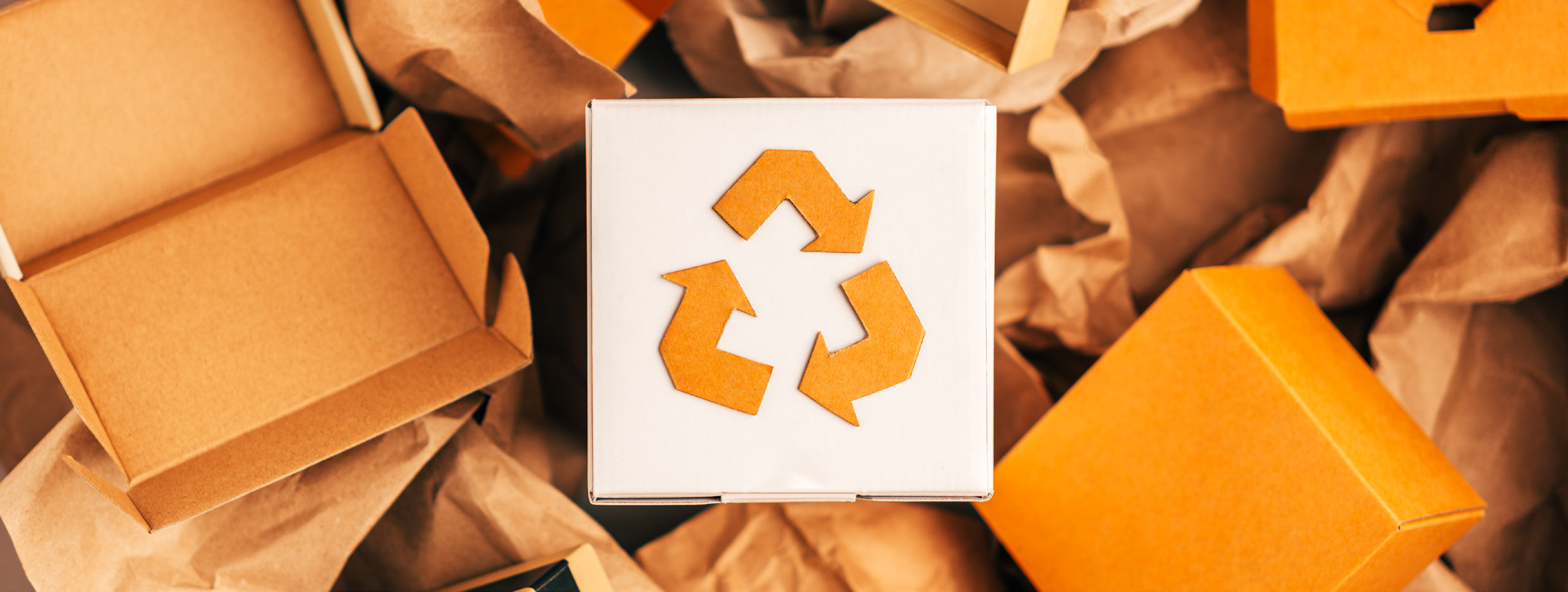 The New Packaging EPR Scheme: Why do we need it?